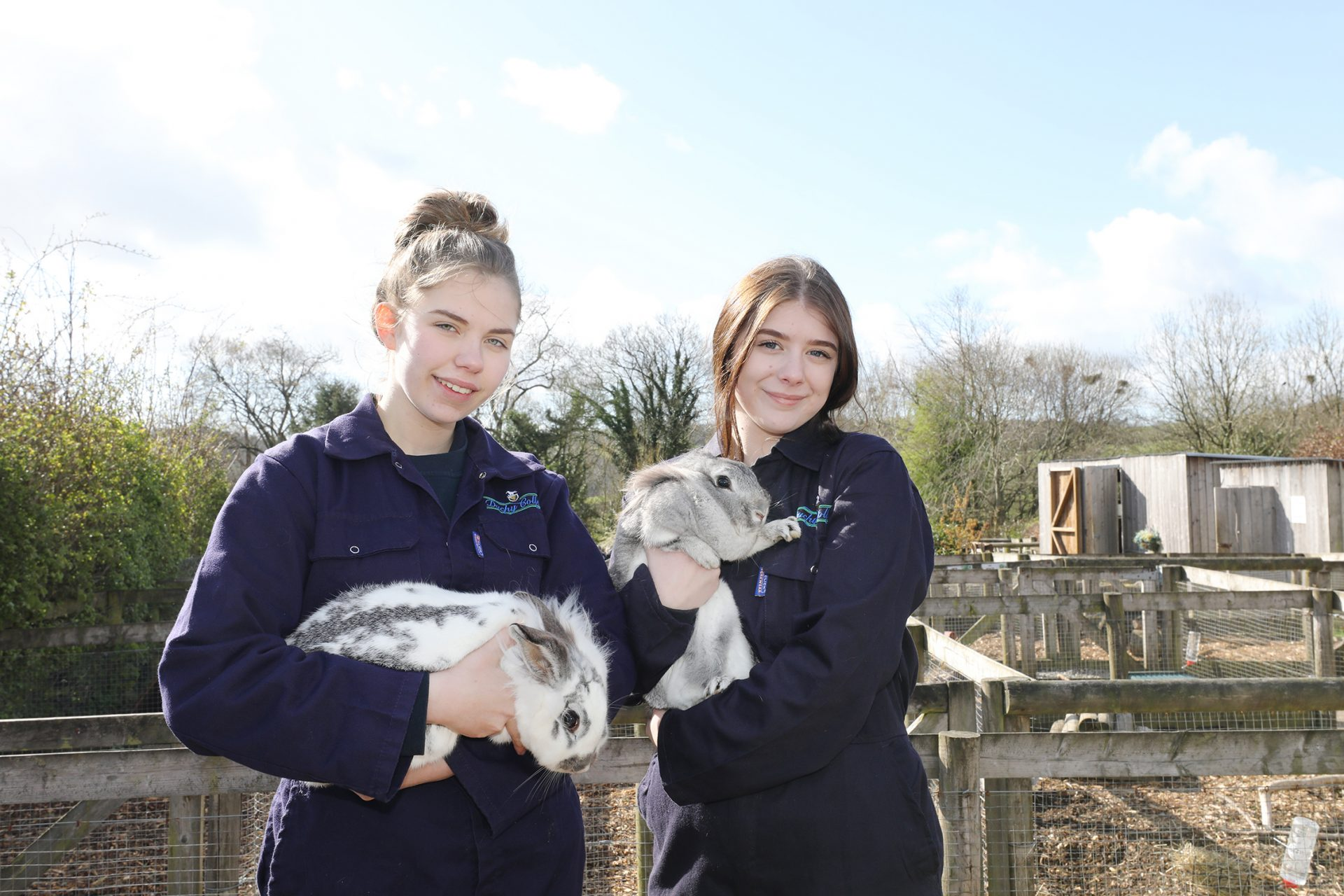 Animal care assistant, Margaret Green Animal Rescue
