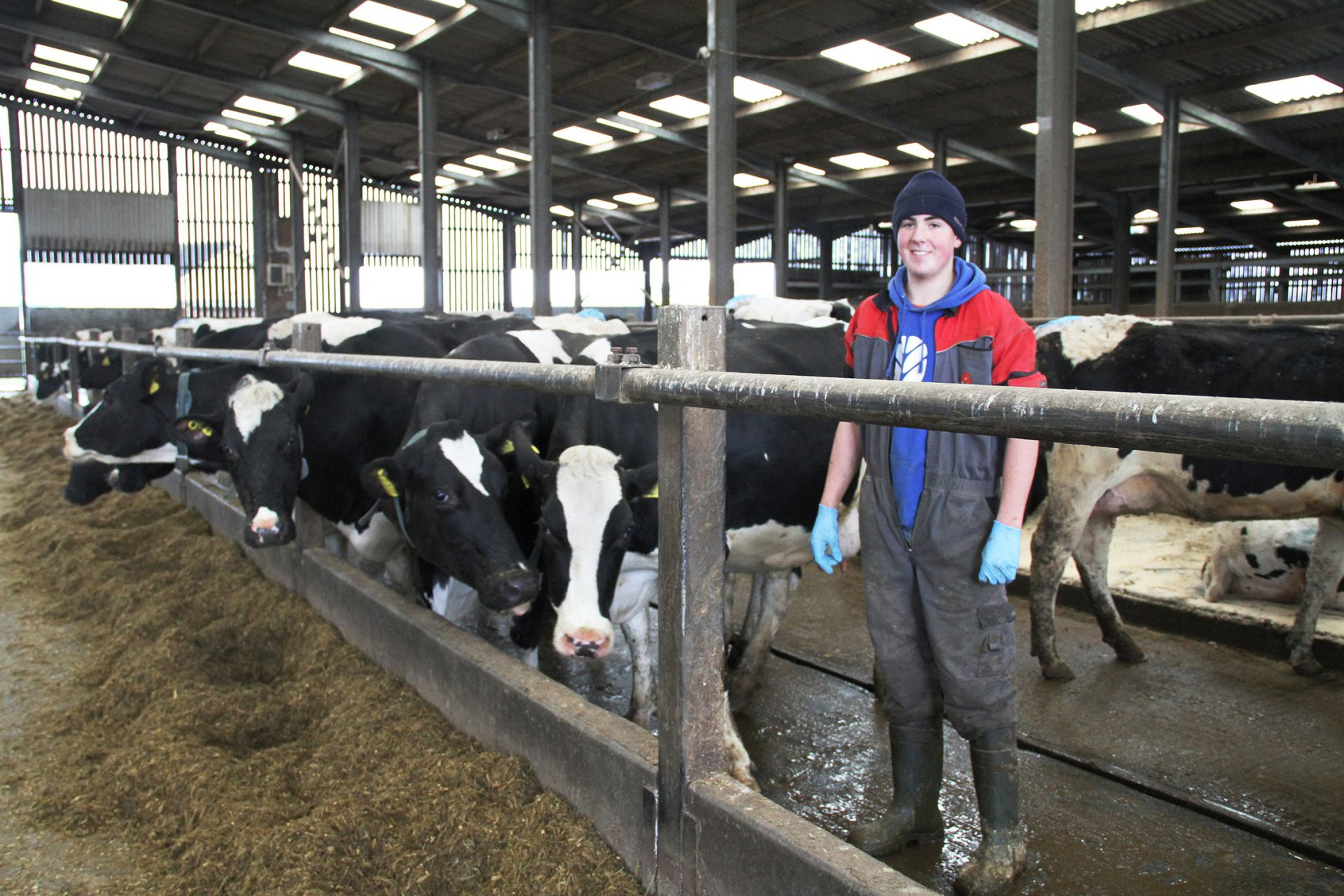 Agriculture Apprentice (Stockperson) with Servis Farm Limited
