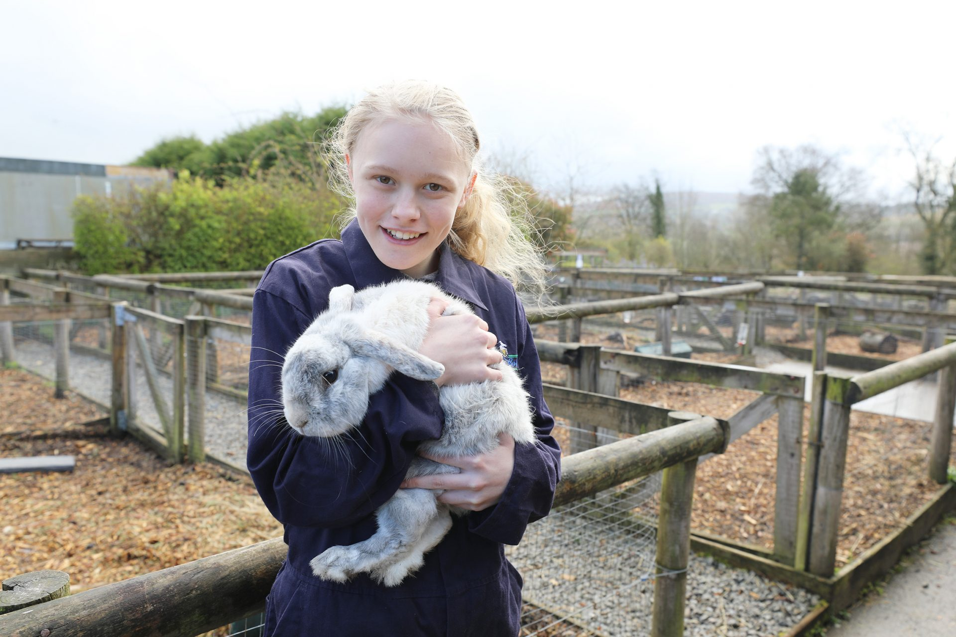 Animal Care Apprentice with Clover Patch