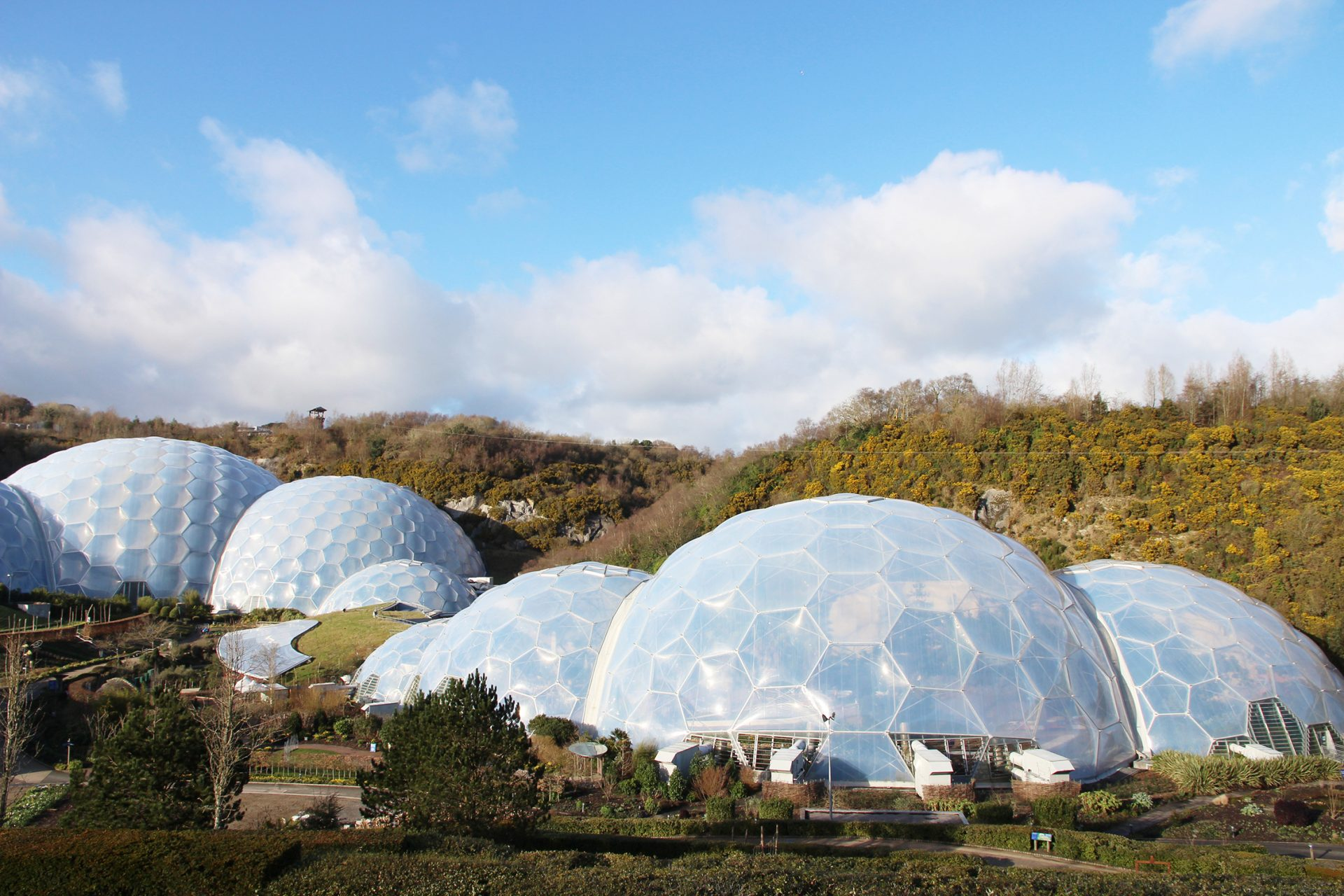 Eden Project Learning Courses and Careers Advice Event