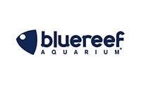 Bluereef Aquarium