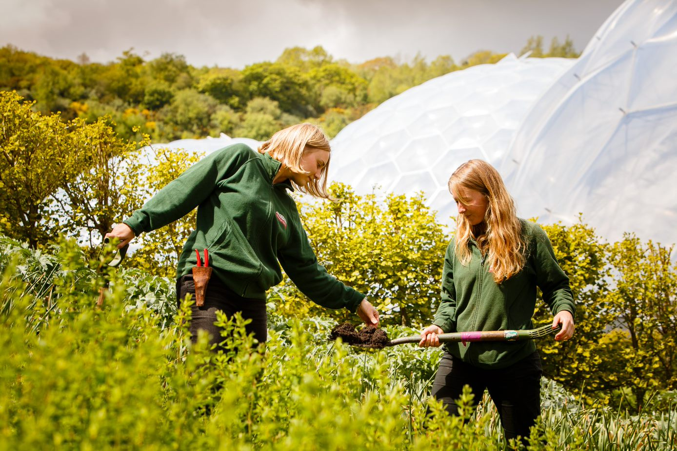 Ecologist Apprenticeship Employer Event (Virtual) | Eden Project Learning